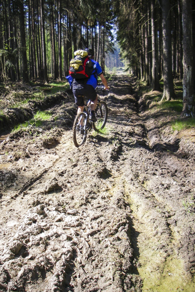 Thema: Fahrradfahrer zerstören die Waldwege