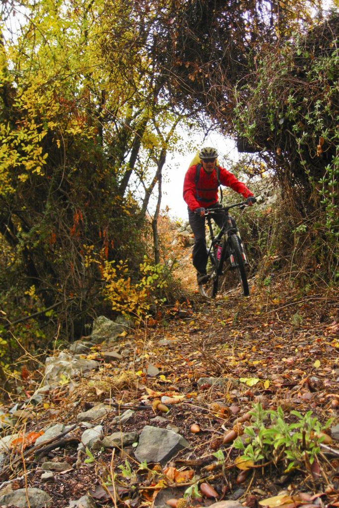Trail nach Fikardou