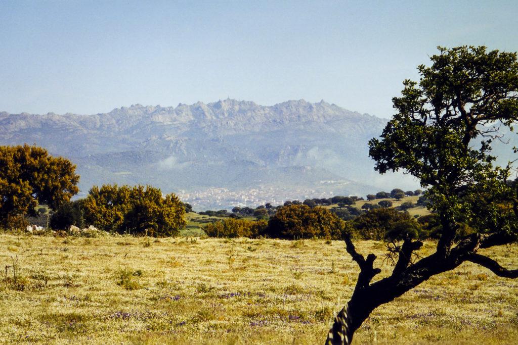 Blick zurück auf den Monte Limbara