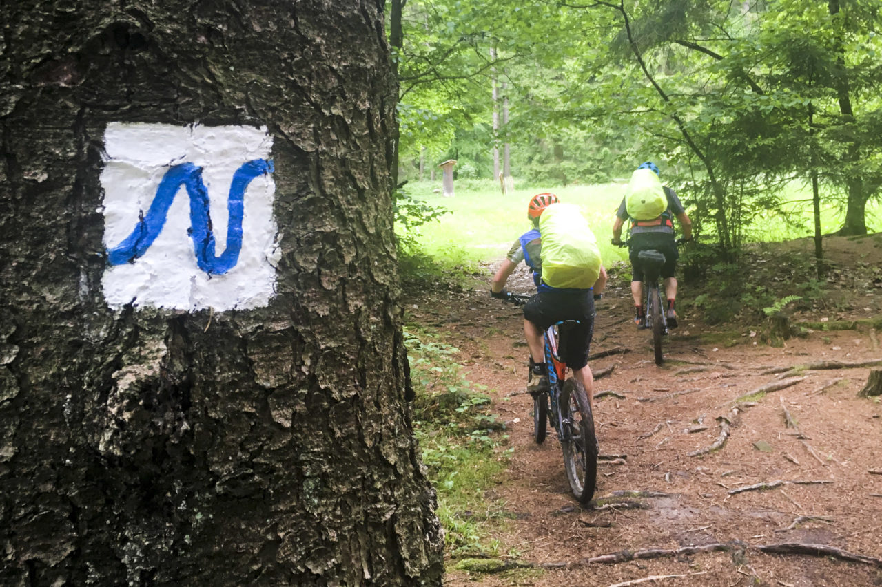 treue und immer gut erkennbare Markierungen auf allen vier Wanderwegen im Odenwald