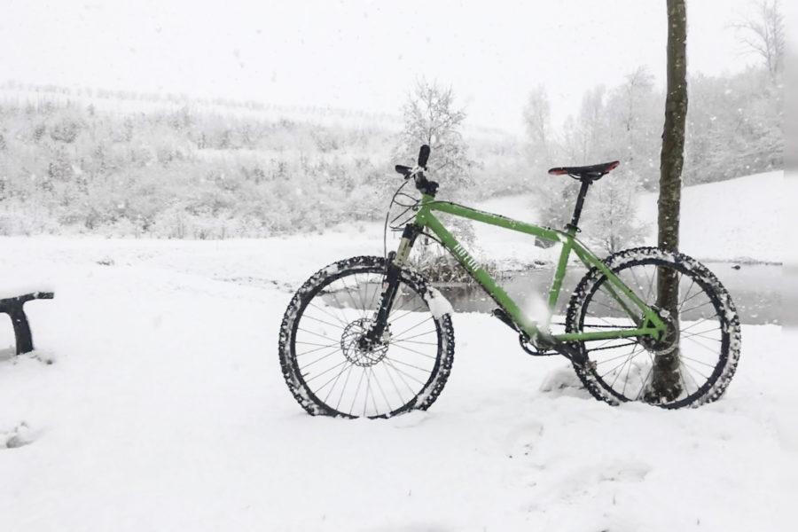 Winter Impressionen #1