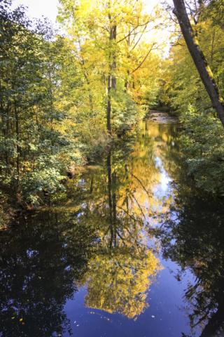 die Spree im Einklang mit dem Herbst