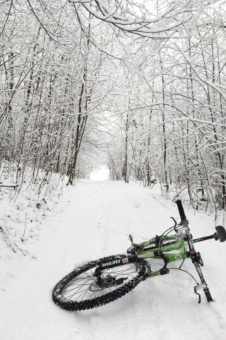 Winter Impression #2