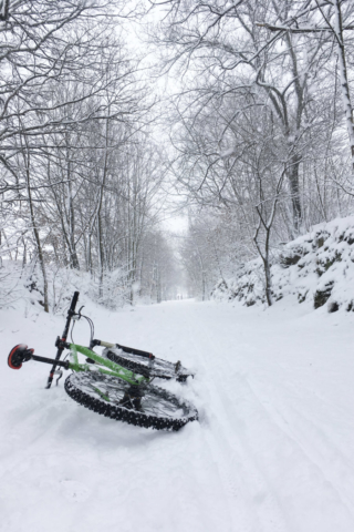 Winter Impression #4