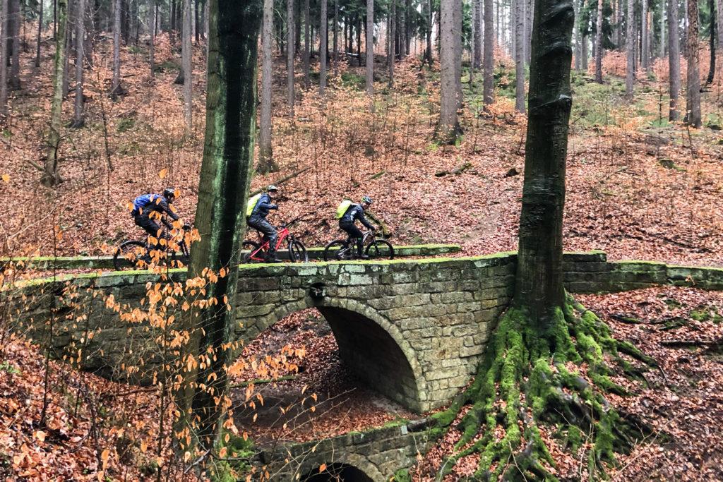 auf den Jagdwegen Richtung Bonnewitz