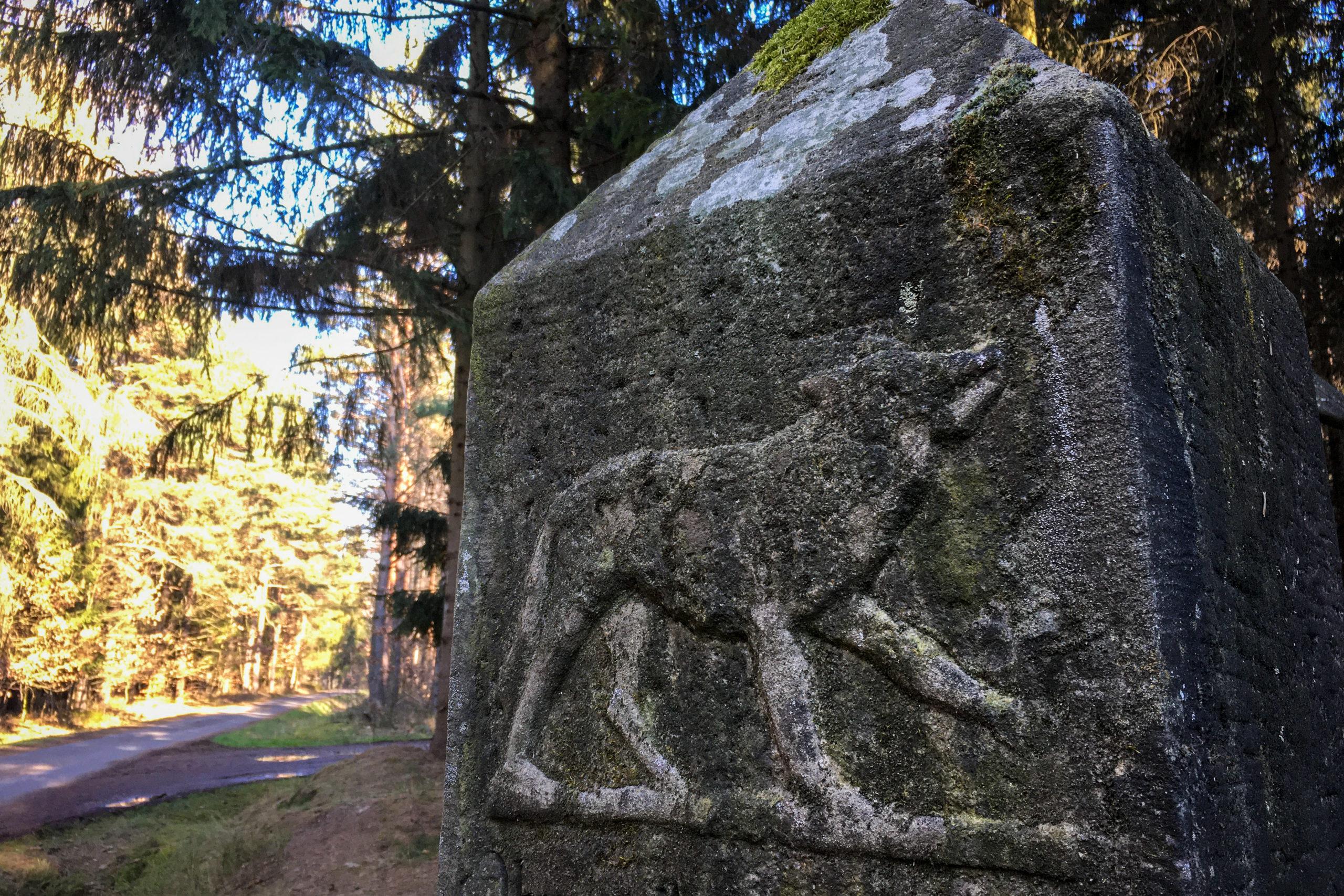 Sie erinnert an den letzten erlegten Wolf in der Region.