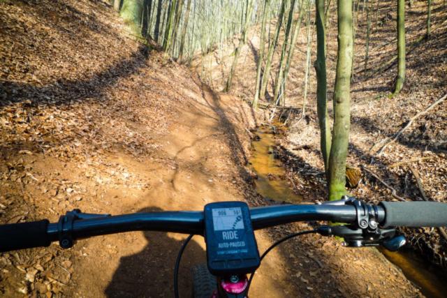 kleine und feine Trails finden sich meist in der Nähe von Bächen