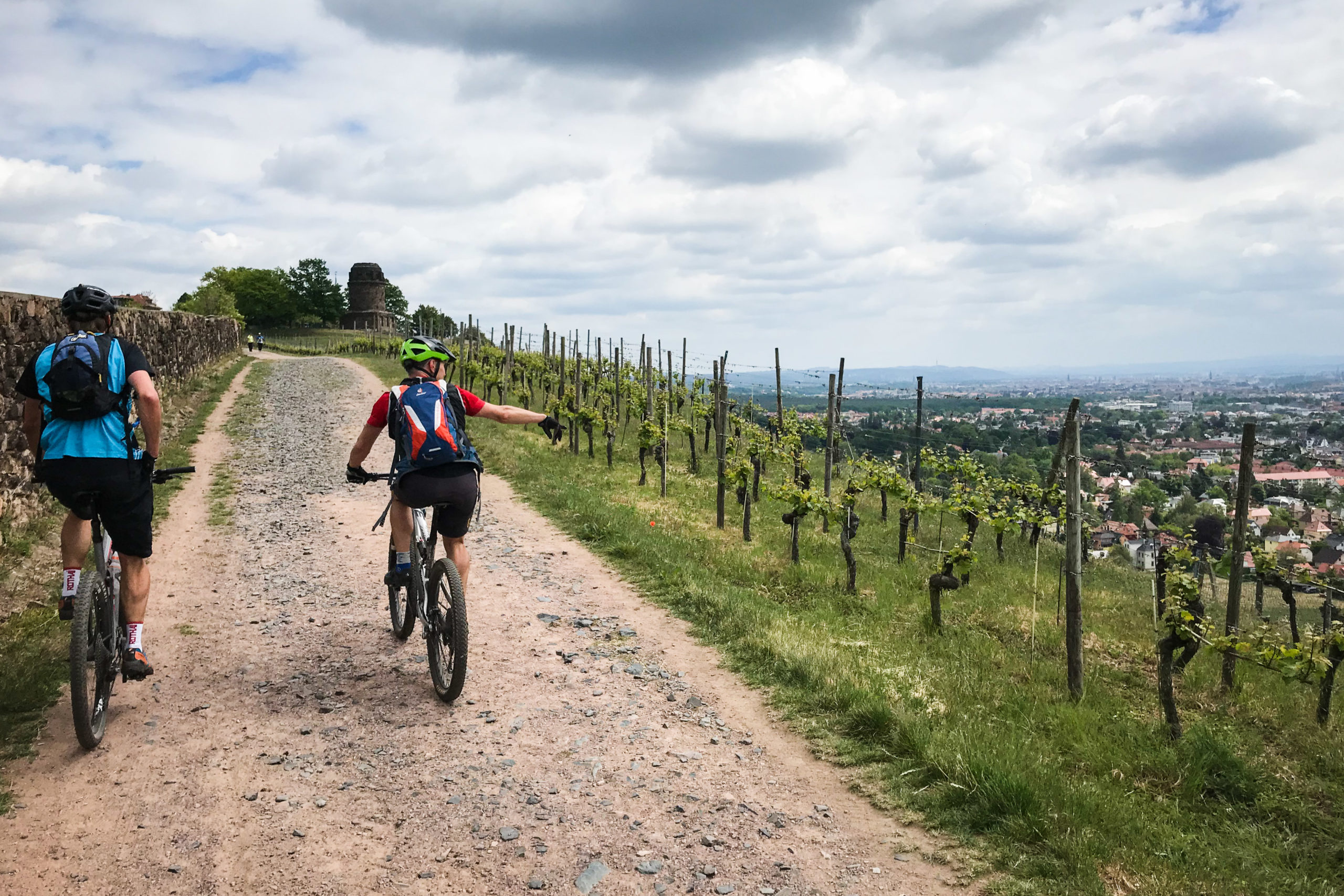 Die Radebeuler Weinhänge sind ein beliebtes Ausflugsziel