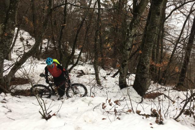 Stundenlanges Gezerre durch tiefen Schnee und umgefallene Bäume.