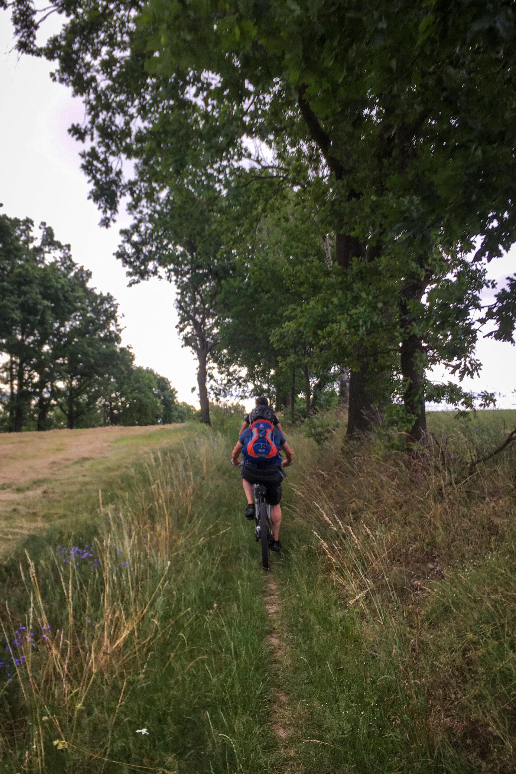 auf kleinen Wegen verlassen wir Radeberg