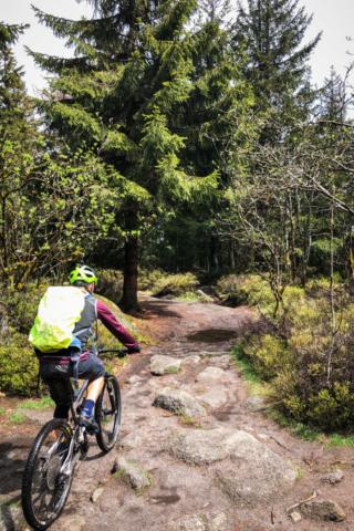 Trail beim Nußhardt