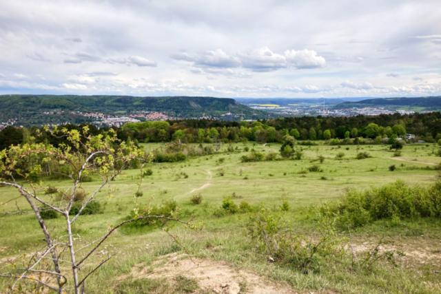 Blick von der Ammerbacher Platte